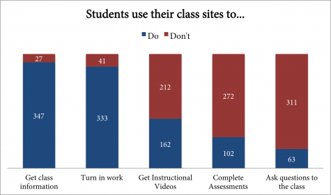 Students Use Class Sites