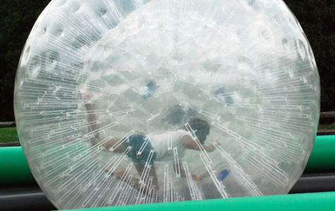 On your mark, get set, go-- Senior Nimrita Singh races in a hamster ball at the annual senior picnic. The senior picnic is one of the last events for seniors leading up to graduation.