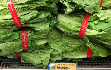E. coli Infections Linked to Romaine Lettuce