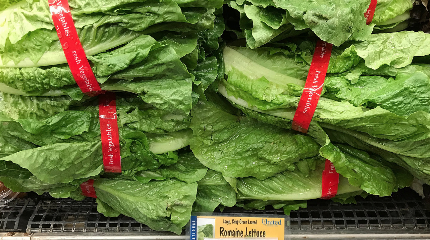 Watch what you eat-- Romaine lettuce is displayed on a shelf at a supermarket in California in November, during an E. coli outbreak traced to contaminated lettuce. The CDC says a new outbreak had made lettuce dangerous to eat, just in time for America's most food centric holiday.
